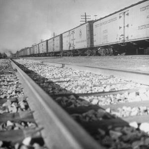 Wartime Railroading: Box Cars of Freight Train Moving Down the Track by Alfred Eisenstaedt