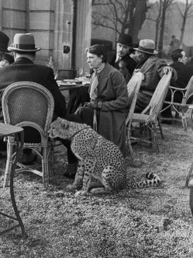 Woman Sitting with Her Pet Ocelot Having Tea at Bois de Boulogne Cafe by Alfred Eisenstaedt