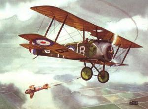 Sopwith Camel, 1917 by Alfred Owles