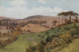 Cissbury Ring Near Worthing by Alfred Robert Quinton