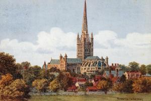 Norwich Cathedral by Alfred Robert Quinton