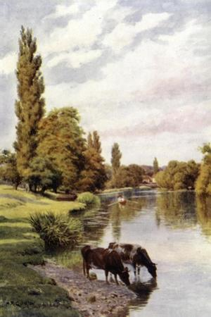 Shiplake by Alfred Robert Quinton