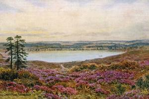 The Great Pond, Frensham by Alfred Robert Quinton