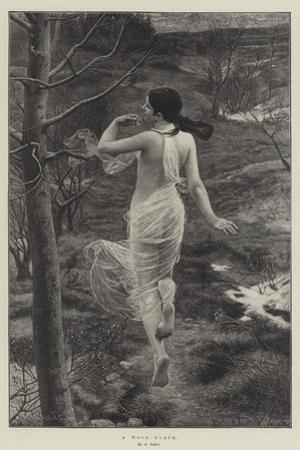 A Wood-Nymph