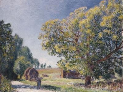 A Clearing in a Forest, 1895 by Alfred Sisley