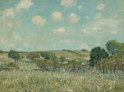 Meadow, 1875 by Alfred Sisley