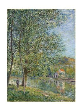Morning Near the Loing; Matin Pres Du Loing, 1879 by Alfred Sisley