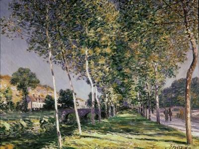 The Walk, 1890 by Alfred Sisley