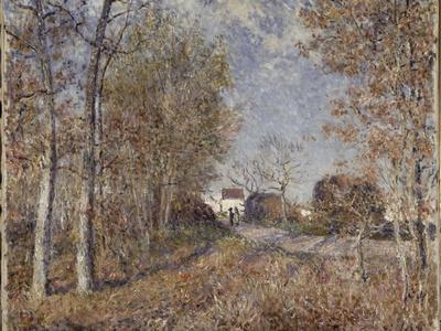 Un coin de bois aux Sablons, dit la route à l'orée du bois (lisière de forêt de Fontainebleau,