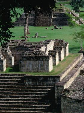 Temples 9 and 4 in the Central Square of the Maya Ruins, Copan, Honduras by Alfredo Maiquez