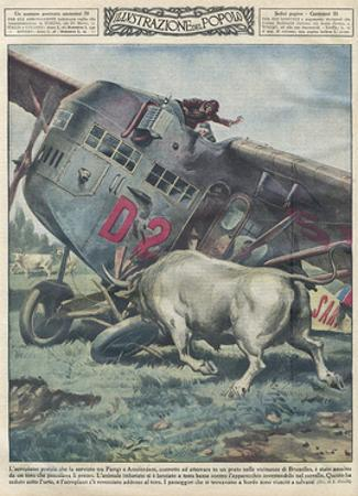 Crash and Bull