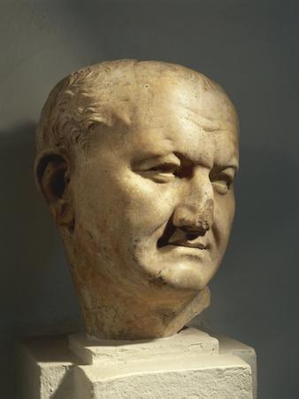 https://imgc.allpostersimages.com/img/posters/algeria-head-of-the-roman-emperor-vespasian_u-L-PPC7NT0.jpg?artPerspective=n