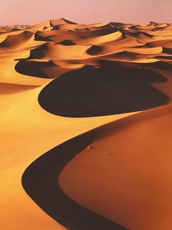 https://imgc.allpostersimages.com/img/posters/algeria-sahara-great-western-erg-oasis_u-L-Q11YRCV0.jpg?p=0