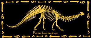 Dinosaur: Brachiosarus by ALI Chris