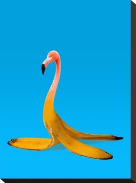 Flamingo Banana by Ali Gulec