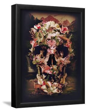 Jungle Skull by Ali Gulec