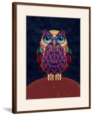 Owl by Ali Gulec