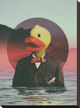 Rubber Ducky by Ali Gulec