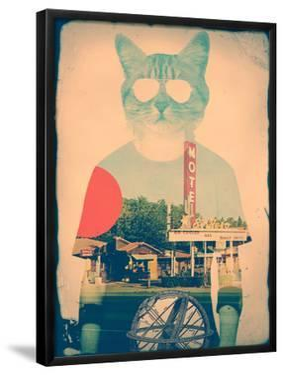 The Cat by Ali Gulec