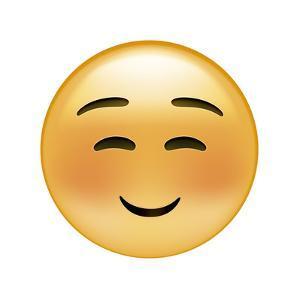 Emoji Squint Small Smile by Ali Lynne