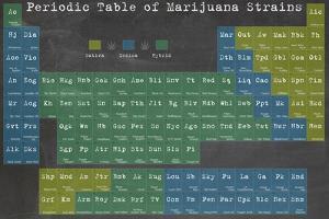 Periodic Table by Ali Potman