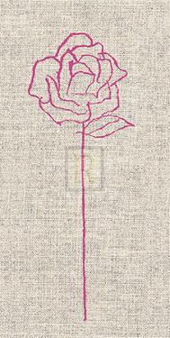 Romantic Rose II by Alice Buckingham