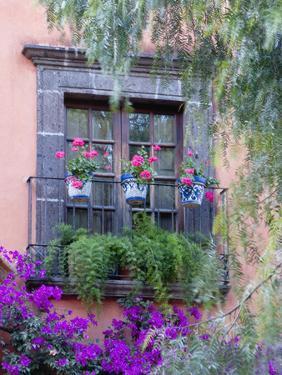 Window with Geraniums, San Miguel De Allende, Mexico by Alice Garland