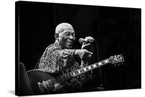 B.B. King by Alice Lorenzini
