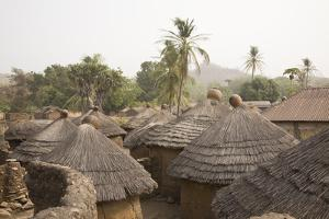 Africa, West Africa, Benin, Beri. Thatched rooves of traditional dwellings in front of palm trees. by Alida Latham