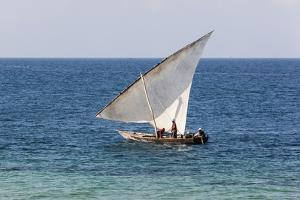 Dhow on Indian Ocean, Stone Town, Zanzibar, Tanzania by Alida Latham