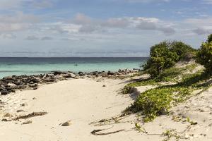 View of Beach and Sea of Zanj, Ihla Das Rolas, Mozambique by Alida Latham
