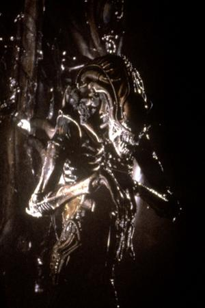 Alien, le huitieme passager (ALIEN), 1979 by RidleyScott (photo)