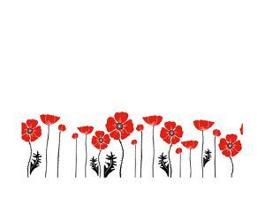 Stylish Red and Black Poppies on White Background by Alisa Foytik