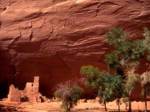 Anasazi Antelope House Ruin and Cottonwood Trees, Canyon de Chelly National Monument, Arizona, USA by Alison Jones