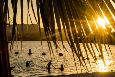 Arizona, Rte 66 Expedition, Cattail Cove State Park on Lake Havasu at Sunset by Alison Jones