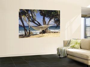 Hammock Tied Between Trees, North Shore Beach, St Croix, US Virgin Islands by Alison Jones