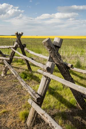 Idaho, Camas Prairie, Wooden Fence at Tolo Lake Access Area by Alison Jones