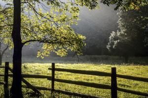 New Jersey, Hunterdon Co, Mountainville, Wooden Fence around a Meadow by Alison Jones
