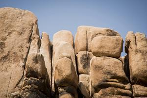 Southern California, Joshua Tree National Park by Alison Jones