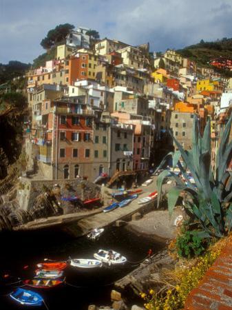 Town View, Rio Maggiore, Cinque Terre, Italy by Alison Jones