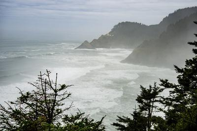 USA, Oregon. Seal Cove in fog on Pacific Coast Scenic Byway between Florence and Newport.