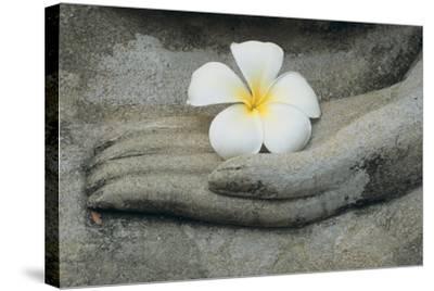 Buddha at Wat Yai Chai Khon by Alison Wright