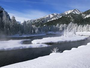 River in Winter, Refuge Point, West Yellowstone, Montana, USA by Alison Wright