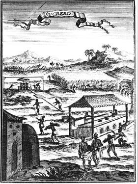 Sugar Factory and Plantation in the West Indies, 1686 by Allain Manesson Mallet