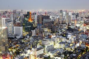 View from Roppongi Hills Mori Tower, Tokyo, Japan by Allan Baxter