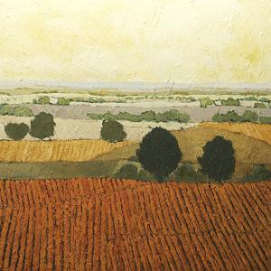 After Harvest by Allan Friedlander