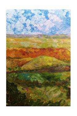 Canyon Ridge I by Allan Friedlander