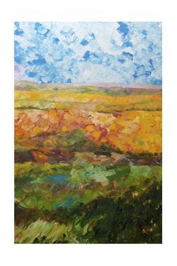 Canyon Ridge II by Allan Friedlander