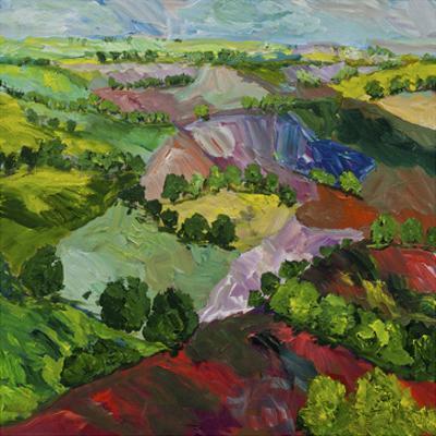 Deep Ridge Red Hill by Allan Friedlander