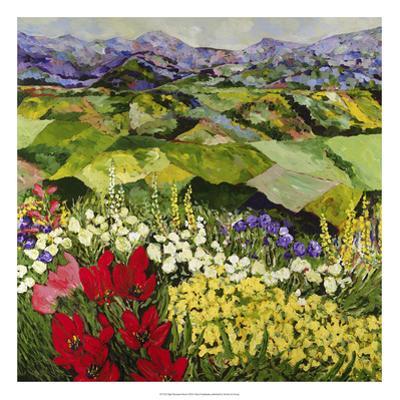 High Mountain Patch by Allan Friedlander
